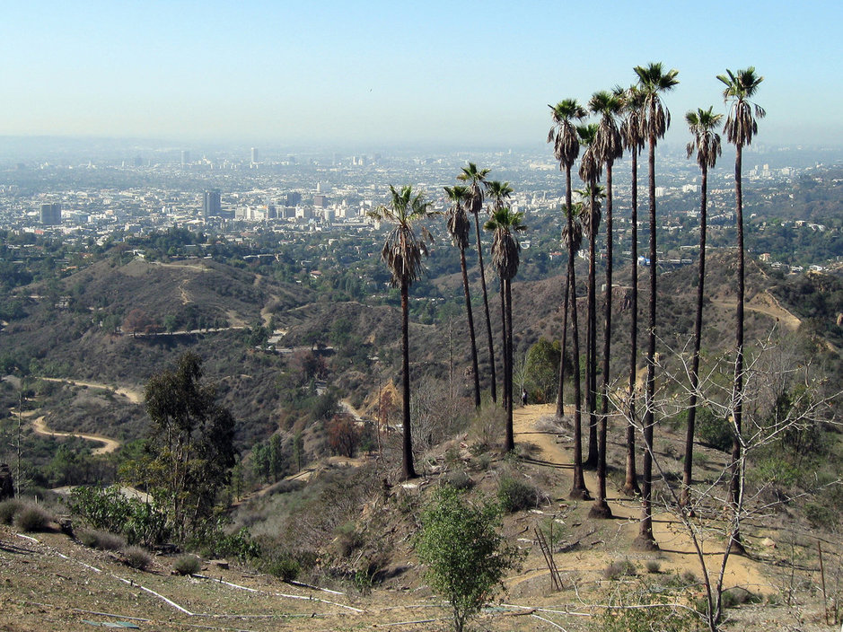 Photo of Downtown Los Angeles from afar.